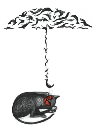 image from http://featherfiles.aviary.com/2012-12-11/f77694d11/fcb65bb2dabb489e8694f66380c6e126_hires.png